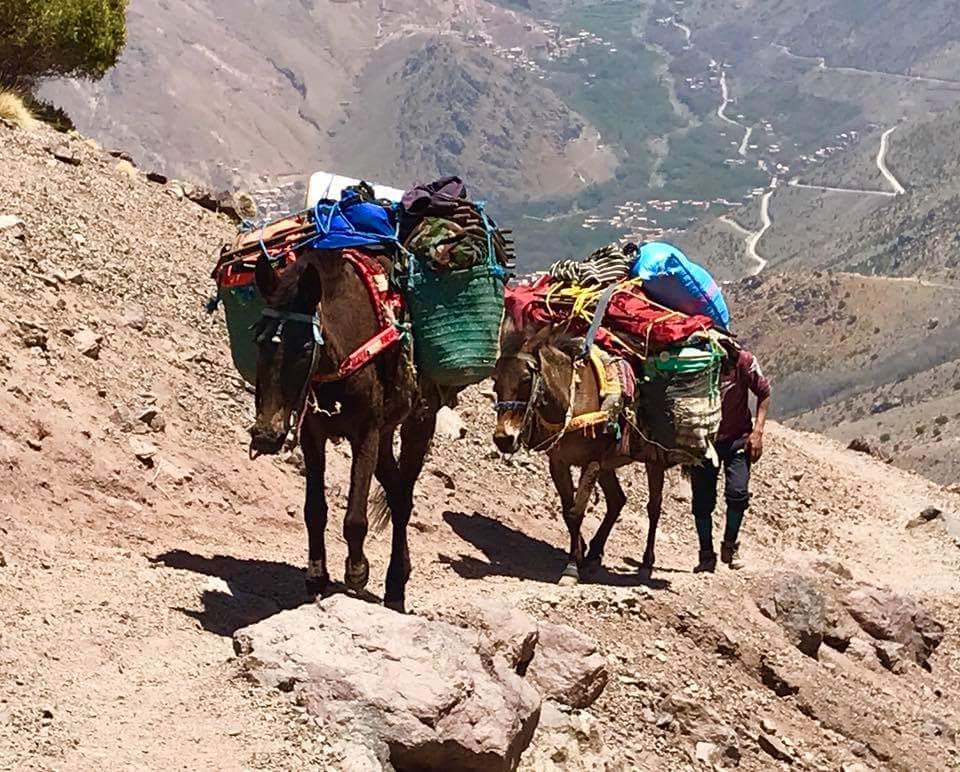 Hiking Morocco