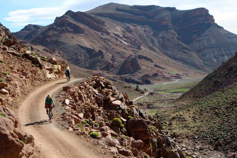 Sahara Road bike